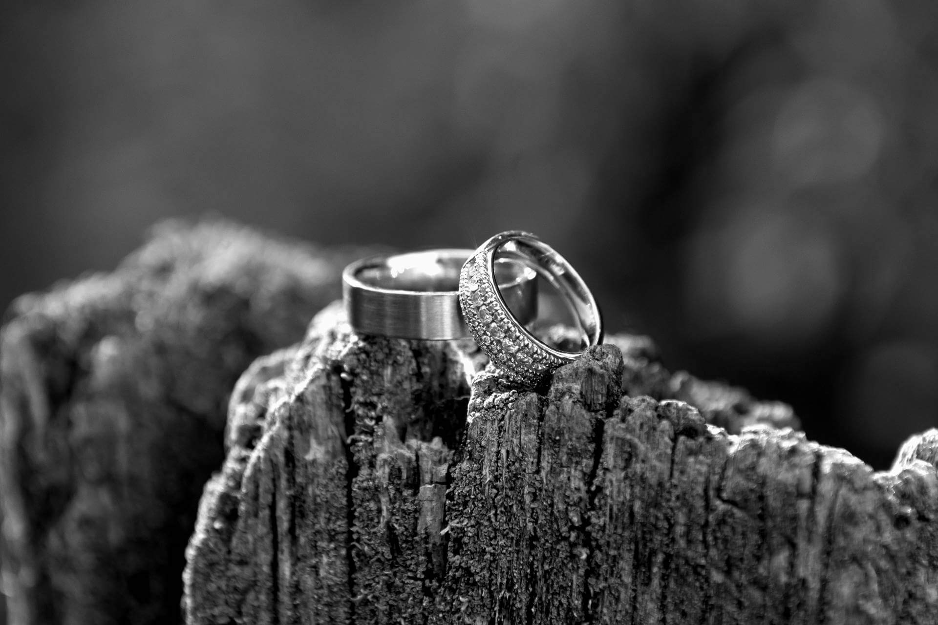 Wedding Engagement Rings   Kropp Photography - Wedding Photography Portfolio