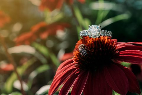 Beautiful large diamond solitaire engagement ring on a flower with a bee collecting pollen at Inn Walden | by Kropp Photography | Cleveland Wedding Photographers